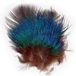 PAVO REAL FEATHERS AZUL