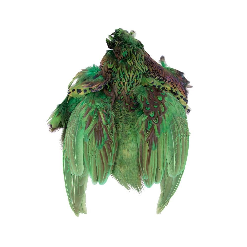 PIEL COMPLETA OF FAISAN (Green)