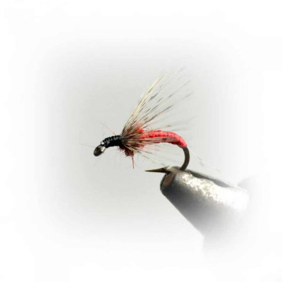 Fly AHOGADA RINGS BAETIS